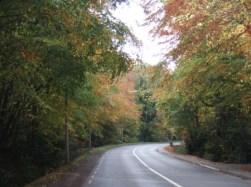 Dublin Road Near Malahide