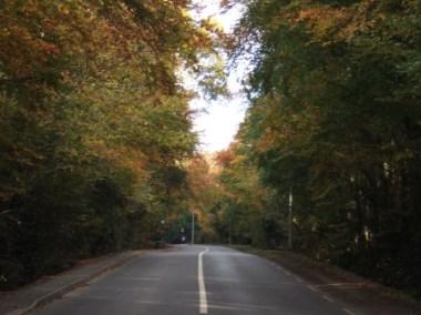 Dublin Road, near Malahide