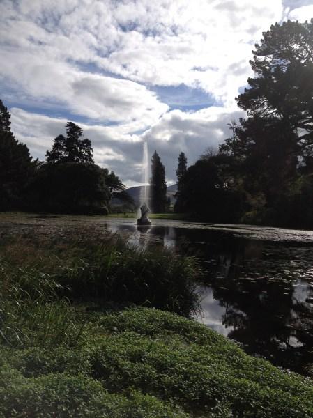 Bilder aus Irland