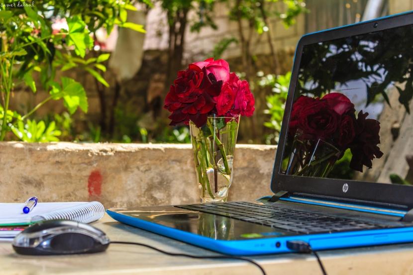 Achieving Work – Life Balance:  Prioritise, Plan andLink