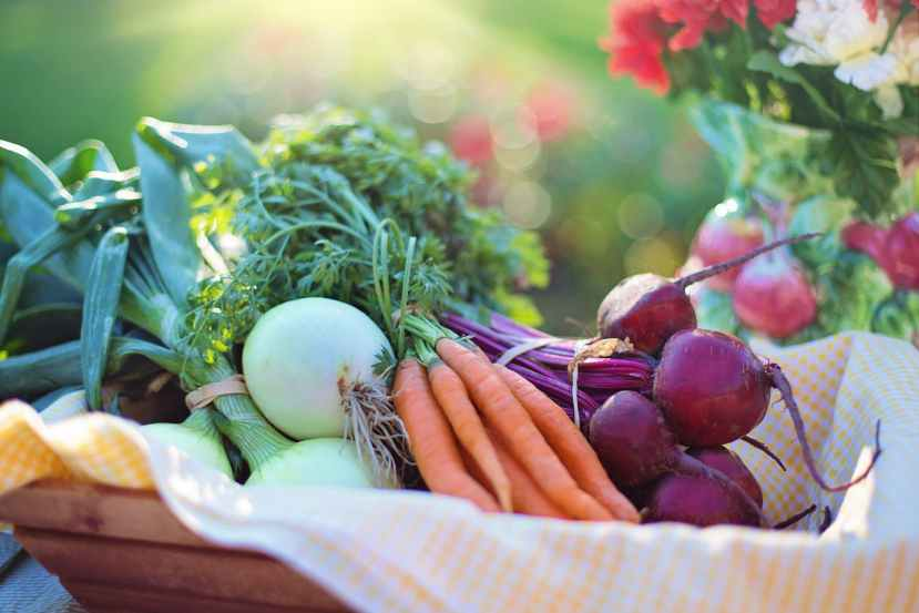 Nutrition – Strong, Simple andSustainable